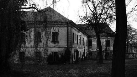 044787400_1508826803-3__Haunted-House-Facade-Home-Building-Old-House-578218__Max_Pixel